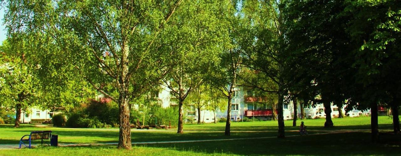 Appartements neufs toulouse bonnefoy for Scopitone 2015 jardin des plantes
