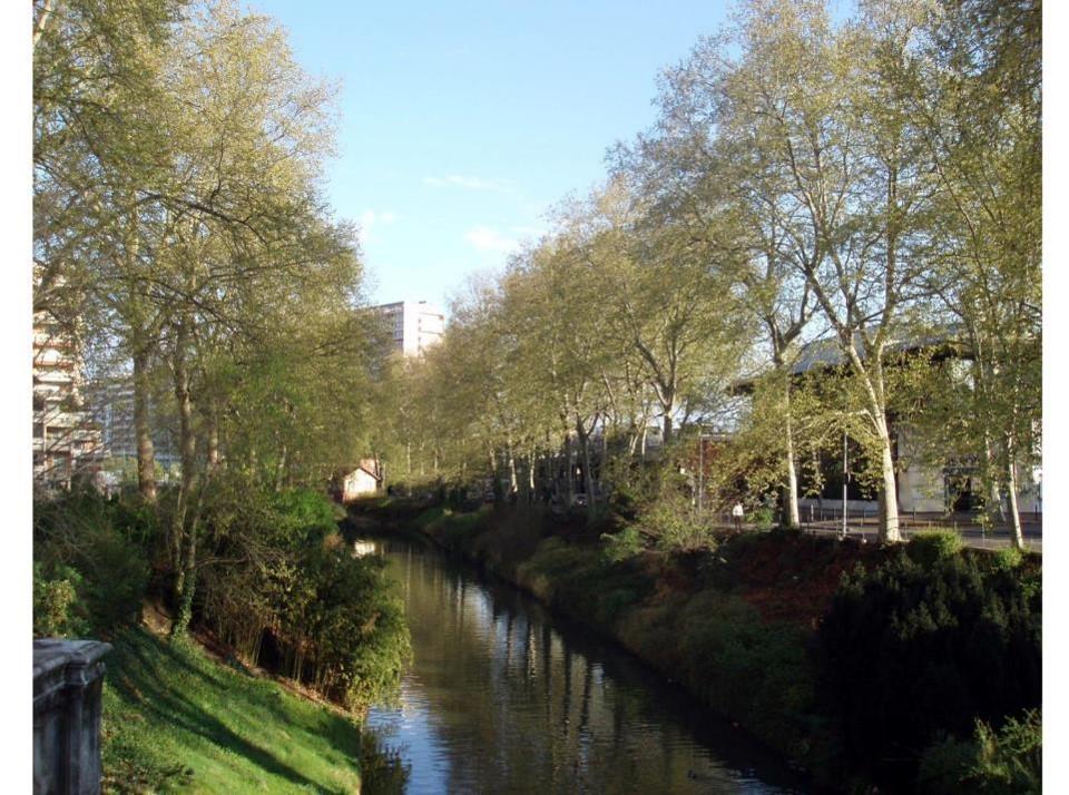 berges du canal du midi 3